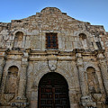 The Alamo 3 by Judy Vincent