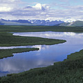 The Alaska Range Reflecting In A Lake by Rich Reid