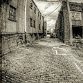 The Alley by Steve Tredway