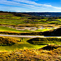 The Amazing Vista Of Chambers Bay Golf Course by David Patterson