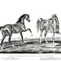 The American Trotting Stud 1866 by Currier and Ives Joy of Life Art Gallery