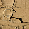 The Ancient Egyptian God Horus Sculpted On The Wall Of The First Pylon At The Temple Of Edfu by Sami Sarkis