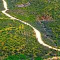 The Apache Trail by Barbara Zahno
