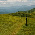 The Appalachian Trail Crossing Max Patch by David Rowe