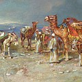 The Arab Caravan   by Italian School