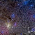 The Area Around The Head Of Scorpius by Alan Dyer