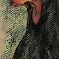 The Aristocrat by Cori Solomon