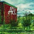 The Ark Wa. by Cynthia Pride