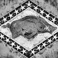 The Arkansas Razorbacks Black And White by JC Findley