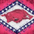 The Arkansas Razorbacks by JC Findley