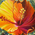 The Artisan Hibiscus by Melody Horton Karandjeff
