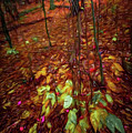 Autumn V6 by Michelle Saraswati