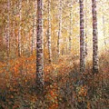 The Autumn Sun In The Birch Forest by Dmitry Kustanovich