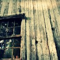 The Back Of An Old House On My Farm by Lisa Victoria Proulx