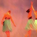 The Ballet by Jost Houk