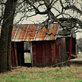 The Barn Out Back by Toni Hopper