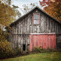 The Barn With The Red Door by Lisa Russo