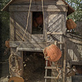 The Barnyard by Teresa Wilson