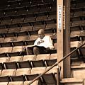 The Baseball Fan Sepia by Frank Romeo