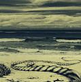 The Beach by Jolanta Bibianna Maciolek