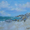 The Beached Boat by Judith Rhue