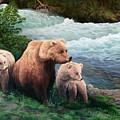 The Bears Of Katmai by Lorna Allan