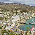 The Beautiful Catalina Island by Chon Kit Leong