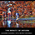 The Beauty Of Nature by Tyler Robbins