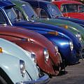 The Beetles by Bernd Billmayer