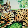 The Bengal by Elizabeth Robinette Tyndall