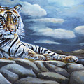 The Bengal Tiger by Portraits By NC