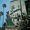 The Beverly Hills by Robert J Caputo