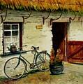 The Bicycle by Karen Fleschler