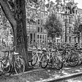 The Bicycles Of Amsterdam In Black And White by Debra and Dave Vanderlaan