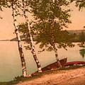 The Birches At Oak Birch Inn, Alton Bay, Lake Winnipesaukee, N. H.  by Mim White