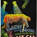 The Black Cat, Boris Karloff, Harry by Everett