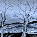 The Bleak Terrain  by Brenda Owen