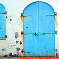 The Blue Door Shutters by Debbi Granruth