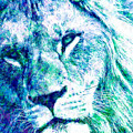 The Blue Lion by Stacey Chiew