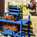 The Blue Wheelbarrow by Paul MAURICE