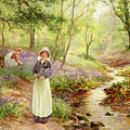 The Bluebell Glade by Ernest Walbourn