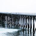 The Boardwalk At San Simeon by Toula Mavridou-Messer
