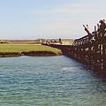 The Boardwalk Leap by Kristin D'Aliso