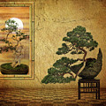 The Bonsai Room by Jessica Jenney