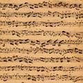 The Brandenburger Concertos by Johann Sebastian Bach
