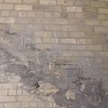 The Brick Wall - Historic Bldg by Janis Beauchamp