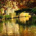The Bridge by Iris Greenwell