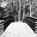 The Bridge by Judy Bugg Malinowski
