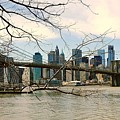 The Brooklyn Bridge  by Elizabeth La Caille