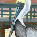 The Brown Pelican by Adam Johnson